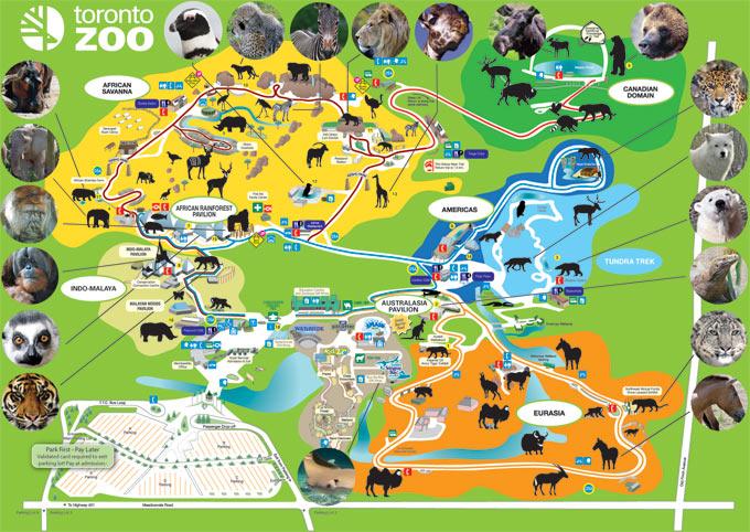 mapa do zoo de lisboa ZOO de Toronto, Canadá | Ginapsi's Blog mapa do zoo de lisboa