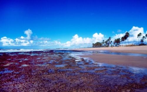 Praia de Jauá