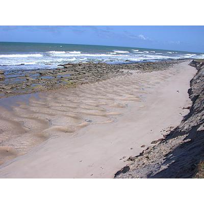 praias das pocas conde 1