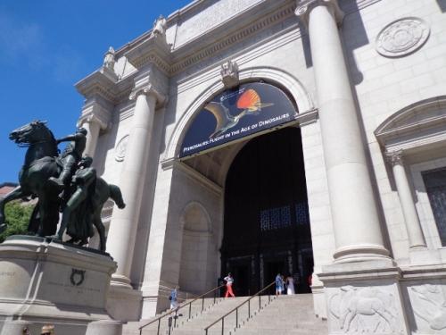 Museu de História Natural - NY