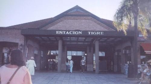 55 tigre